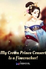 My Crown Prince Consort Is a Firecracker!
