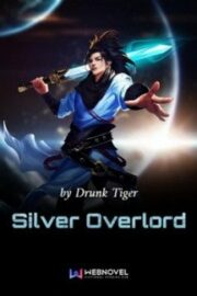 Silver Overlord
